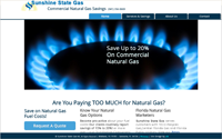 Home page screen shot displaying a large natural gas ring